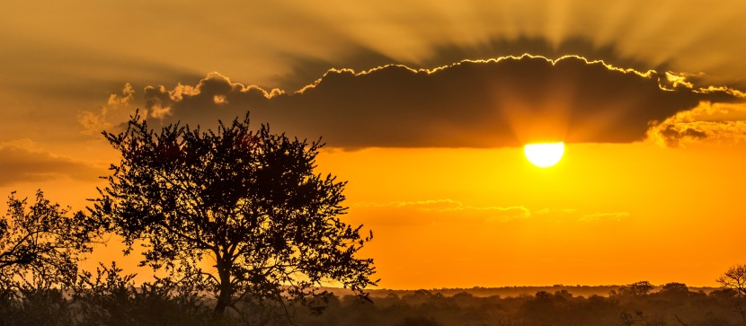 kruger national park@journaledge
