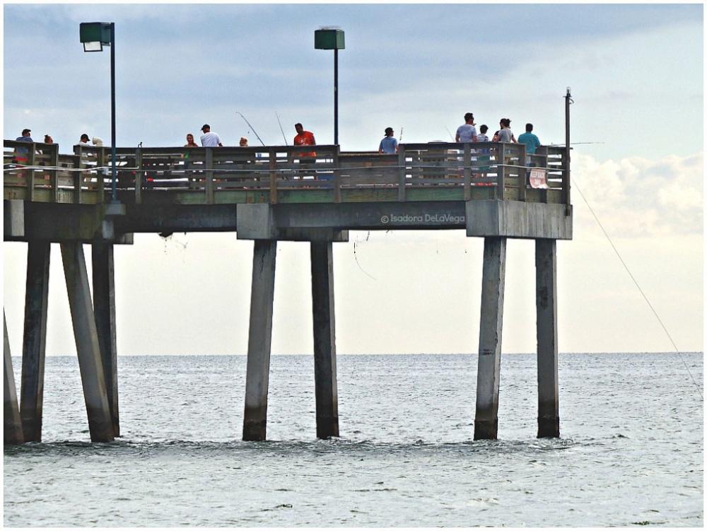 beach-fishing-venice-ps-web