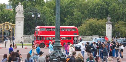 Buckingham Palace - St Jame's Park