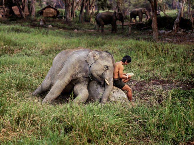 THAILAND-10033