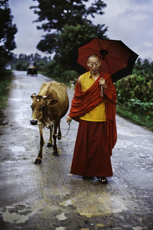 00131_04; Tibet; 2000; TIBET-10976